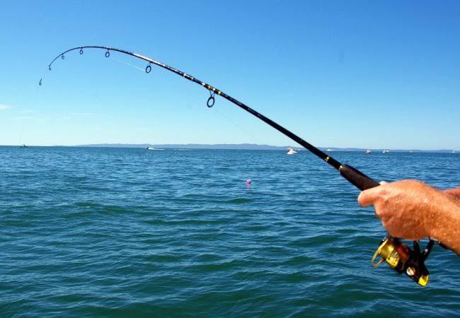 Товары для рыбалки оптом недорого