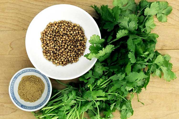 Любимые корейские салаты. Пищевые ингредиенты, семена и зерна кориандра в Украине